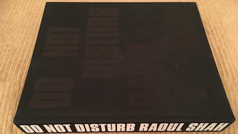 """""""Do Not Disturb,"""" by Raoul Shah"""