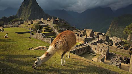 Peruvian Connection relies on Peru's alpaca wool and pima cotton for its line of apparel, accessories and assorted lifestyle products. Image courtesy of Peruvian Connection
